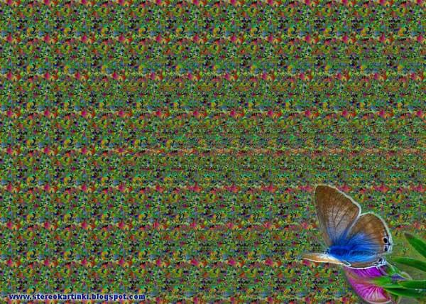 Задача.  Сколько бабочек вы видите на стереокартинке?