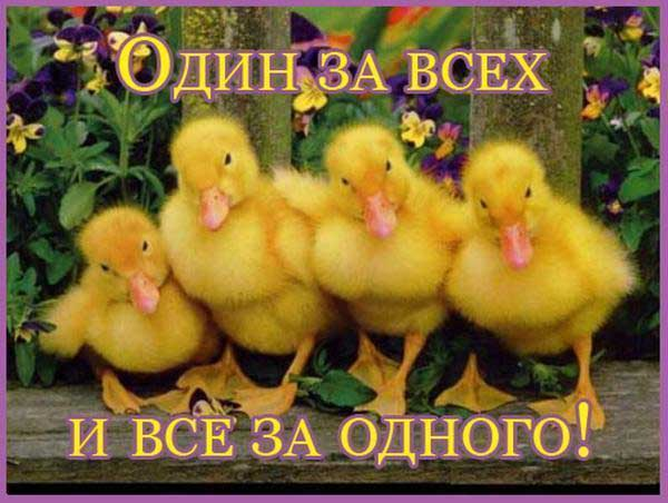 http://www.detskiy-mir.net/images/fotoprikols/7388_big.jpg