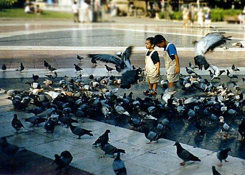 Поделка голуби своими руками