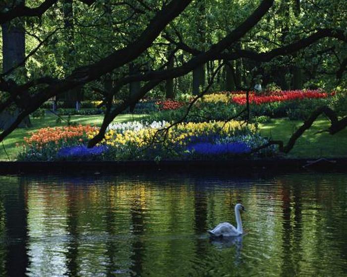Прекрасный картинки природы