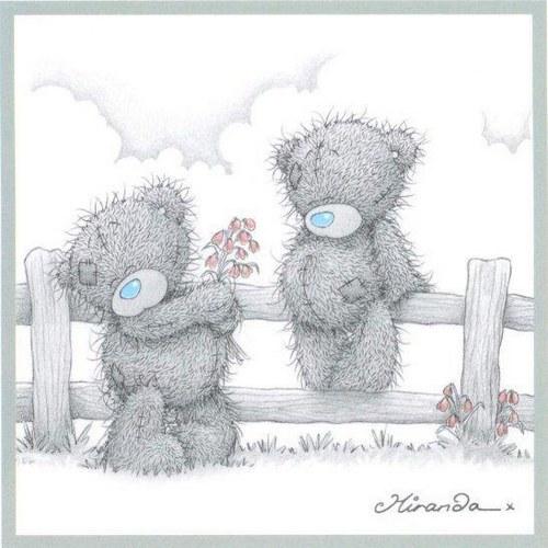 День плюшевого мишки teddy bear